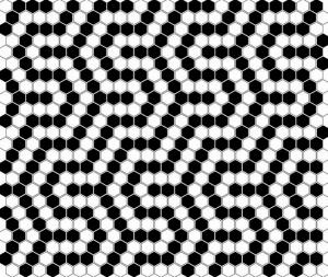 Dunin Mini Hexagon B&W Coral 26x30 cm