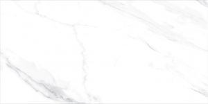 Halcon Naos Blanco Pulido 60x120 cm