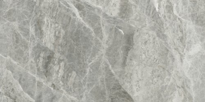 Ape Silver Grey Pol. Rect. 60x120 cm