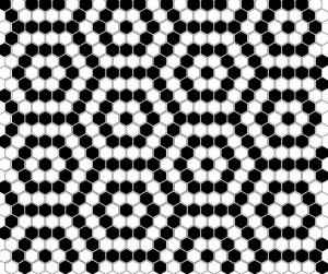 Dunin Mini Hexagon B&W Nano 26x30 cm