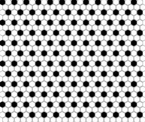 Dunin Mini Hexagon B&W Mix 26x30 cm