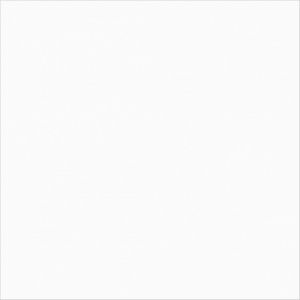 HDC Blanco Mate 59x59 cm - super biała matowa